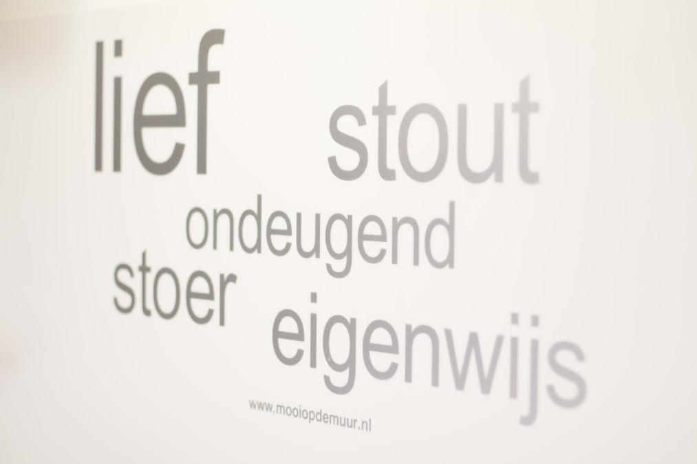 stichting earlybirds fotografie, givaini, flevoziekenhuis, fotoreportage Almere, semper lumen